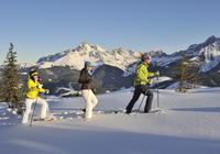 Schneeschuhwandern am Rossbrand