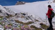 Gletscherwanderung-Blick-Dachstein