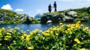 Wanderregion Krakautal - Österreichs Wanderdörfer