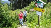 Wandern am Nebelstein