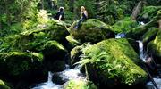 Waldviertel - Österreichs Wanderdörfer