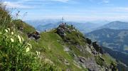 Feldalphorn Berge Wildschönau