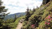 Wanderweg am Koralm Kristall Trail