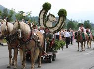 Frühlingsfest der Pferde
