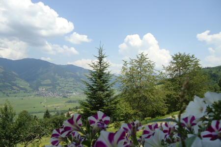 Landschaft Unterholzhof