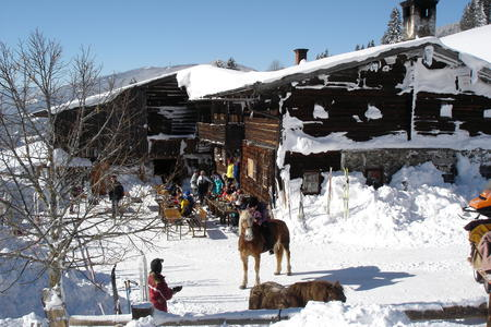 Halseralm im Winter