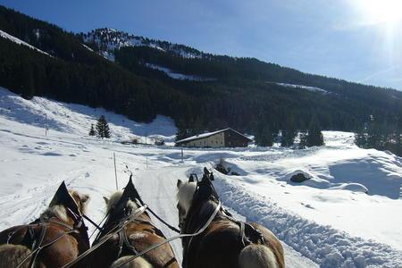 Schönangeralm Wildschönau Tirol
