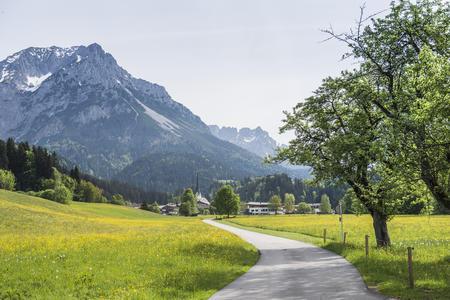 Panorama Scheffau