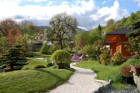 Bonsaigarten mit Teehaus