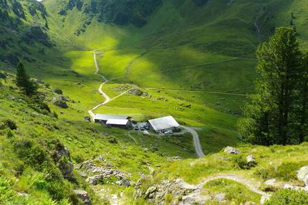 Steinbergalm Alpbach
