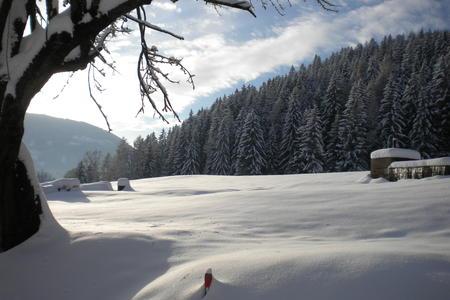 Winter im Naturpark Zirbitzkogel