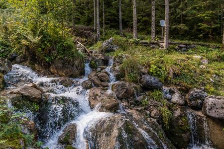 Wilde Wasser im Salzburger Saalachtal