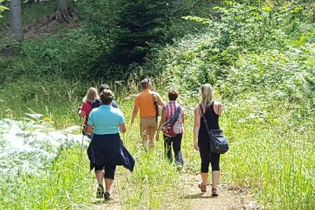 Wanderung zur Steinberger Hütte