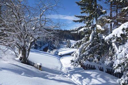 Winteridylle im Lavanttal