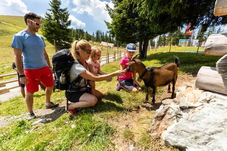 Bergbahnen Wildschönau Park