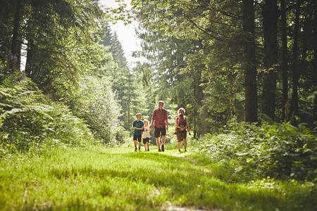 Waldexpedition für Wirbelwinde