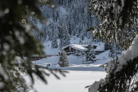 Wildmoosalm im Winter