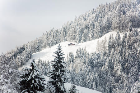 Winterwandern PillerseeTal