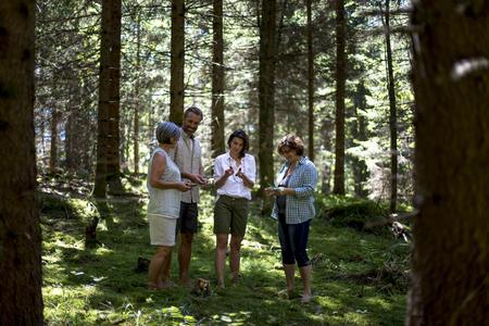 Erkenntnisse im Wald