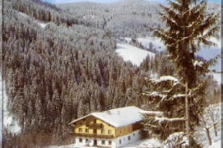Grubbauer