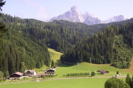 Holzwurmhütte
